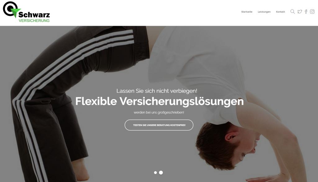 Homepage Makler, Internetseite,  Werbung